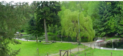 Beautiful Trout Creek Farm in Mission, BC is rated British Columbia's #1 U-catch.  We have 2 ponds with an abundance of healthy rainbow trout.